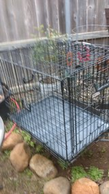 pet cage large in Lawton, Oklahoma