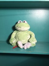 Frog stuffie in Alamogordo, New Mexico