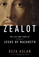zealot the life and  times of jesus of nasareth in St. Charles, Illinois