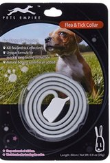 Flea Collar for dog in Kingwood, Texas