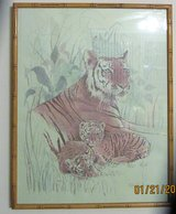 Tiger Family framed picture in Kankakee, Illinois