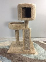 Cat Tower (NEW) in Kingwood, Texas