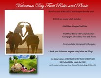 Romantic Horse Trail Rides~ Champagne, Chocolates,Wine, Cheese, and fruit! in Macon, Georgia