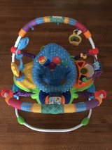 Baby Einstein jumperoo in Tinley Park, Illinois