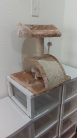 Cat play stand in Okinawa, Japan