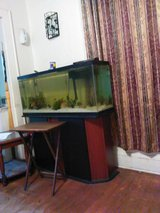 55 gallon tank and stand, lizard cages lights in Beaufort, South Carolina
