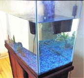 Fish Tank With Stand and Accessories~REDUCED~ in Camp Lejeune, North Carolina