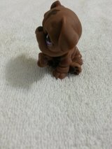 NEW Littlest Pet Shop Bull Dog-Retired #881 in Camp Lejeune, North Carolina