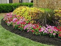 Affordable Yard/lawn Work in Kingwood, Texas