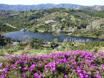 "Room for Rent, 15 min. from Base, COUNTRY/LAKE/BEAUTIFUL/QUIET! ""NO BASE TRAFFIC"" in Camp Pendleton, California"