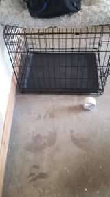 small pet cage in Columbia, South Carolina