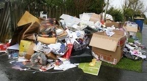 TRASH HAULING/JUNK REMOVAL/PCS CLEANING YARD&GARDEN WORK/ETC    ... in Ramstein, Germany