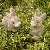 FLOCKED BUNNY RABBITS on Picks, Natural Look in Chicago, Illinois