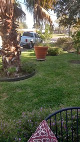 Need yard mowed/edged, blown in Conroe, Texas