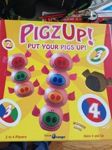 Pigz Up! Game in Batavia, Illinois