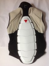 Dainese Pro -Ski or Snowboard Back Protector/Turtle Back in Ramstein, Germany
