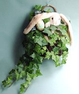 SPRING RABBIT & IVY HANGING ARRANGEMENT in Chicago, Illinois