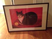 Large Cat Picture in Plainfield, Illinois