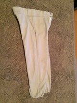 Rawlings Baseball Grey Pants in Houston, Texas