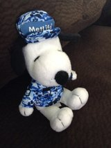 Cute Snoopy in Naperville, Illinois