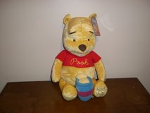 80 TH Anniversary Winnie Pooh in Fort Campbell, Kentucky
