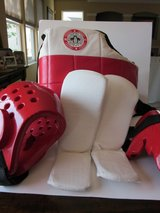 Tae Kwon Do Sparring Gear in Elgin, Illinois