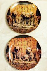 The Bradford Exchange, Puppy Love Plates in Chicago, Illinois
