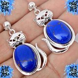 New - Natural Blue Lapis Cat Earrings in Alamogordo, New Mexico