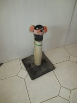 cute scratching post in Ramstein, Germany