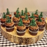 13 pinetree cupcake toppers in Conroe, Texas