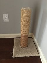Scratching post in Conroe, Texas