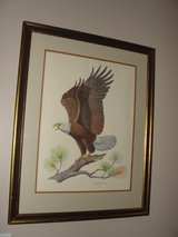 """AMERICAN BALD EAGLE"" ALBERT GILBERT 1976 SIGNED IN PENCIL FRAMED ART in Wilmington, North Carolina"