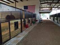 Horse Boarding-Full Care and riding lessons in Conroe, Texas