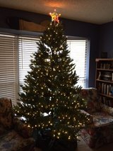 7 ft lighted (white lights) Christmas tree in Alamogordo, New Mexico
