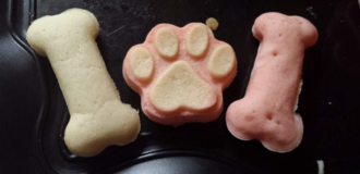 Homemade dog treats in Fort Campbell, Kentucky
