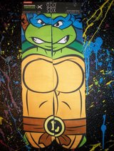 Odd SOX 'Teenage Mutant Ninja Turtles' Leonardo in Barstow, California