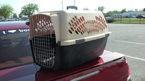 Medium Pet Taxi # 1 in Lawton, Oklahoma