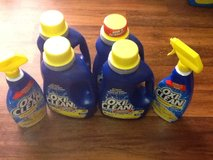 OxiClean Liquid Detergent in Beaufort, South Carolina
