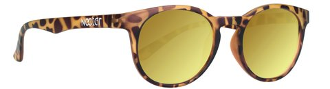 Nectar Polarized sunglasses (Sunnies) in Bartlett, Illinois