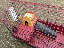 Small Animal cage with accessories and supplies! in Hopkinsville, Kentucky