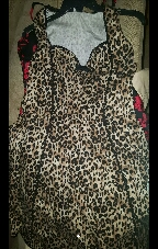Cheetah Vintage Dress in Lackland AFB, Texas