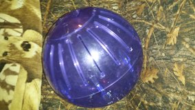 Large pet ball in Lawton, Oklahoma