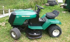 Weed Eater by Murray riding mower in Houston, Texas