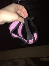 xs pink dog harness in Kingwood, Texas