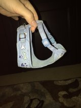 blue puppy dog harness in Kingwood, Texas