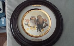 Screech Owls Framed Decorative Plate in The Woodlands, Texas