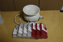 Electoric Wax warmer with 7 packs of Time & Again wax waffle bars in Okinawa, Japan