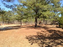 Owner Financing...Beautiful Mobile Home Lot in Perry, Georgia