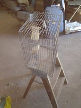 Canary Cage old in Alamogordo, New Mexico