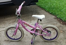 Princess Bicycle in Aurora, Illinois
